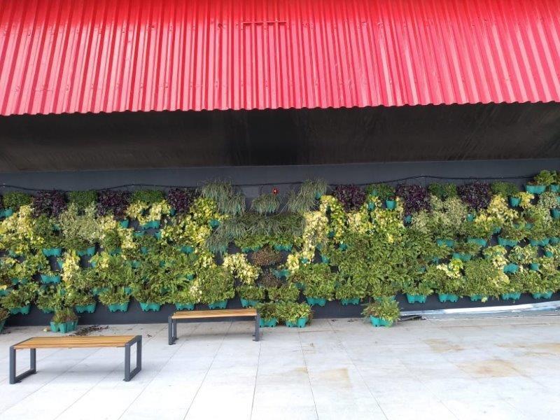 Empresa horta vertical