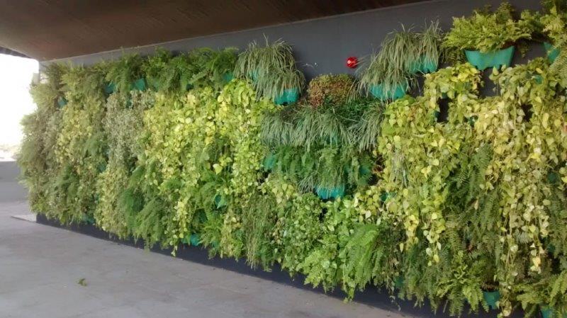 Projeto parede verde