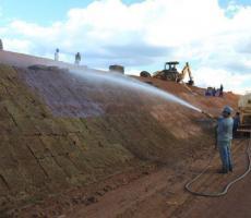Empresa de reflorestamento em campinas